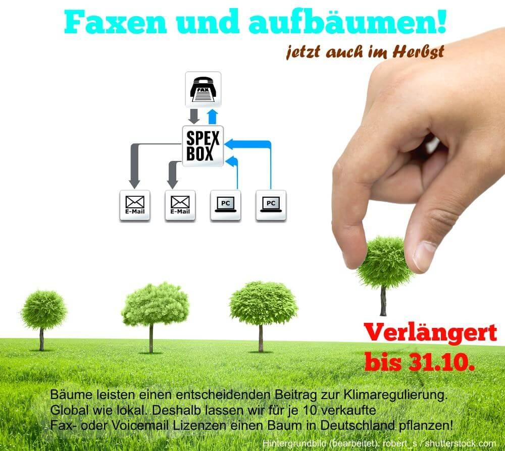 SPEXBOX Baumpflanzaktion bis 31.10. verlängert