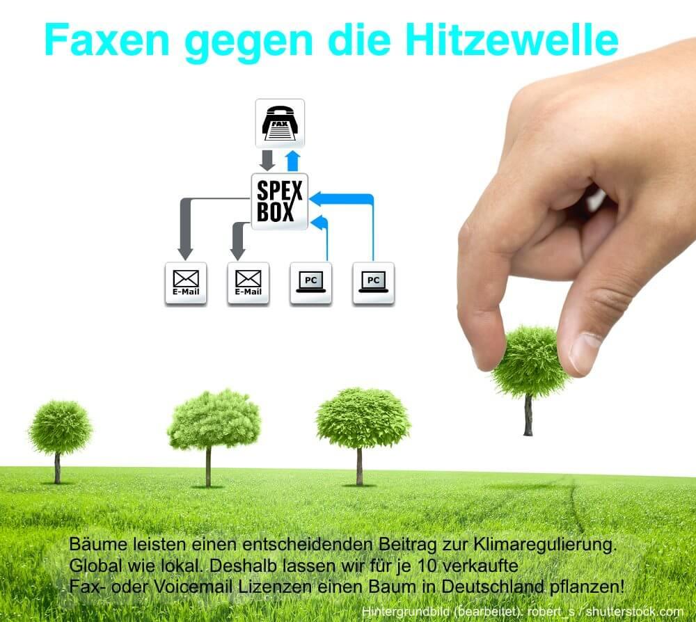 Aktionsgrafik - SPEXBOX Baumpflanzaktion